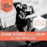 Semaine Intensive : Krump avec Gaël Marvelous – 19 au 23 février 2018